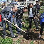 Всероссийская акция «Сирень Победы», 6 мая 2015 г.